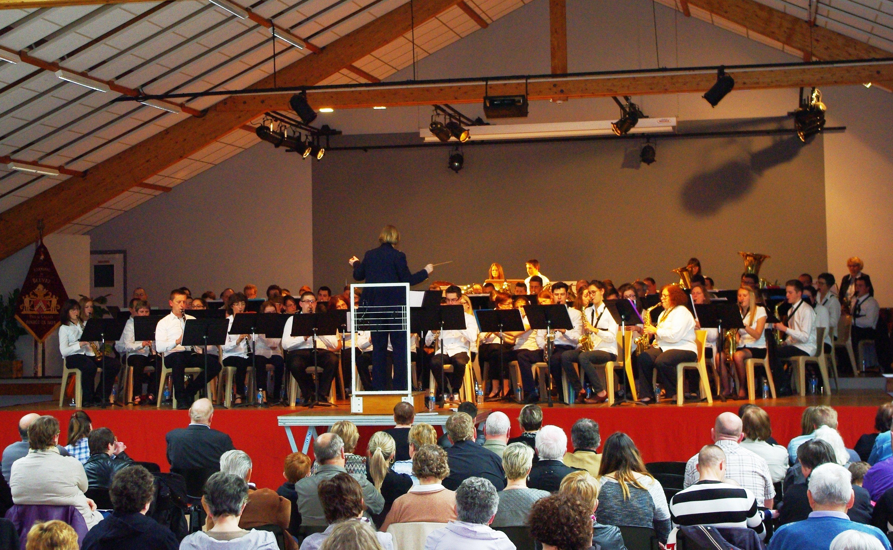 Les 5èmes Musicofolies ont enchanté le public dans Festivités 5e-musicofolies-6-avril-2014-28